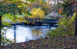 En bro i höst arkivbild