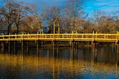 En bro i morgonen Royaltyfri Bild