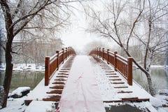 En bro som täckas av en tung snö Royaltyfri Bild