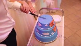 En brud och en brudgum klipper deras bröllopstårta arkivfilmer