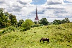 En brun häst betar på en lutning av en grön kulle, i en lantlig medeltal arkivfoton
