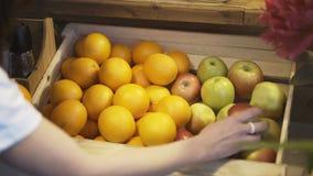 En brunettflicka tar ett äpple i hennes händer från en ask av apelsiner och äpplen arkivfoto