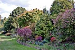 En brunn lagerförd häck mycket av trädet, buskar, blommor och olika former och format för växter allra royaltyfri foto