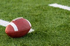En brunt piskar amerikansk fotboll på ett fält fotografering för bildbyråer