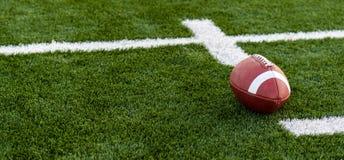 En brunt piskar amerikansk fotboll på ett fält royaltyfria bilder
