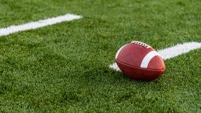 En brunt piskar amerikansk fotboll på ett fält royaltyfri bild