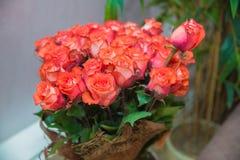 En bukett av blommabuketten av rosor för hundra rosa färger Blommabukett av 100 röda rosor Arkivfoton