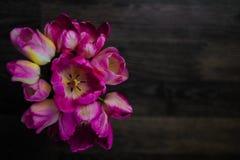 En bukett av blommor p? en m?rk tr?bakgrund Magentaf?rgade tulpan i en vas St?lle f?r din text Top besk?dar arkivbilder
