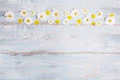 En bukett av cosmeaen eller kosmos för vita blommor med bandet på vita bräden Trädgårds- guling blommar över handgjord trätabellb Royaltyfri Bild
