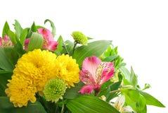 En bukett av nya blommor som isoleras på vit bakgrund Royaltyfri Fotografi