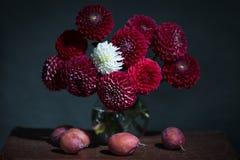 En bukett av röda och vita blommor Arkivbild