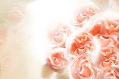 En bukett av röda rosor på en vit bakgrund vektor för detaljerad teckning för bakgrund blom- Royaltyfria Bilder