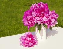 En bukett av rosa pioner i en vas Royaltyfria Foton