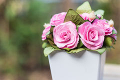 En bukett av rosa rosor i krukor Arkivfoton