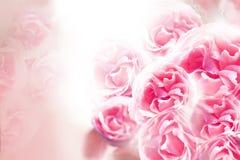 En bukett av rosa rosor på en vit bakgrund vektor för detaljerad teckning för bakgrund blom- Fotografering för Bildbyråer