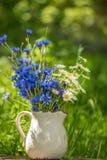 En bukett av vildblommor av blåa blåklinter och kamomillar Arkivfoto