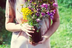 En bukett av vildblommor i händerna av en ung flicka i en ljus sommarklänning royaltyfri foto
