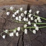 En bukett av vita liljekonvaljer med det gröna bladet på en träbakgrund Arkivfoto