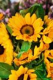 En bukett från ljusa gula solrosor på blommamarknaden Arkivfoto