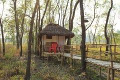 En bungalow i en skog Arkivbild