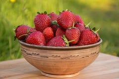 En bunke av jordgubbar Fotografering för Bildbyråer