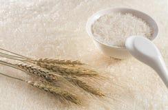 En bunke av ris med risöron i bakgrunden arkivbilder