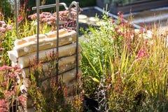 En bunt av dekorativt vedträ på bakgrunden av gräs royaltyfri fotografi