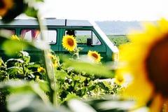 En campareskåpbil i ett solrosfält royaltyfri fotografi