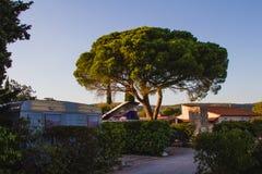 En campingplats under solnedgång arkivfoton