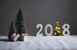 En campo debajo de los abetos en la distancia están los cuadros 2018 donde en el papel de un árbol de navidad con las luces Fotografía de archivo libre de regalías