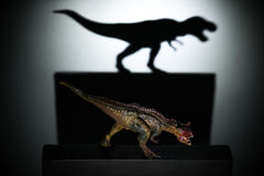En carnotaurus som gjuter en tyrannosarieskugga i mörkt begrepp av styrka & ambitioner Royaltyfria Bilder