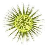 En cell för mikroorganism 3d framförande 3d Arkivbild