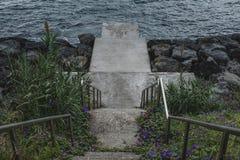 En cementtrappuppgång som leder till havet som omges av blommor och gröna växter royaltyfria bilder