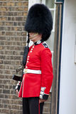 En ceremoniel beväpnad guard, London Royaltyfri Bild