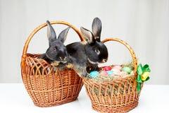 En cesta los conejitos hermosos cerca de la cesta con los huevos de Pascua Imagenes de archivo
