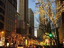 En Chicago gata på jul Tid royaltyfri fotografi