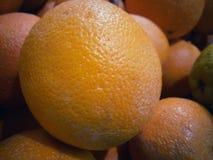 En cirkel av apelsiner och motiv eller texturer arkivbilder