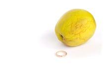 En cirkel och ett skrumpet äpple Royaltyfria Foton