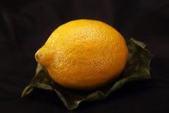 En citron på ett blad royaltyfria foton