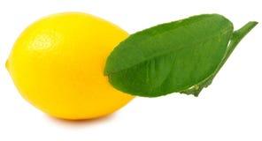 En citron som isoleras på vit arkivfoto