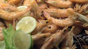 En closeup av lagade mat shrimpes dekorerade med citronen och grönsallat stock video
