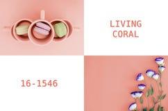 En collage av foto i färg i 2019 bosatta korall royaltyfri foto