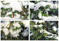 En collage av julbilder för illustrationvektor för bakgrund härlig vinter fotografering för bildbyråer