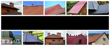 En collage av många bilder med fragment av olika typer av ro royaltyfri bild