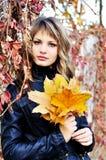 En colores del otoño Imagen de archivo