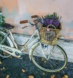 En cykel på coblestonetrottoaren med korgen av lavendel blommar arkivbilder