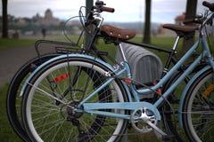 En cykelställning i en parkera i Levis arkivbild