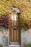 En dörr som är bevuxen med druvasidor Royaltyfri Bild