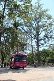 En dag i Cambodja Royaltyfri Fotografi