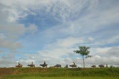 En dag i livet av bönder i Mindanao Royaltyfri Fotografi